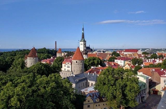 Stage en Estonie