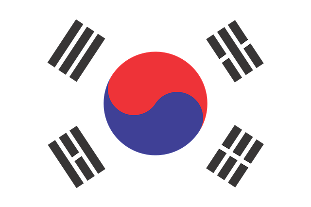 Internship in a startup in South Korea