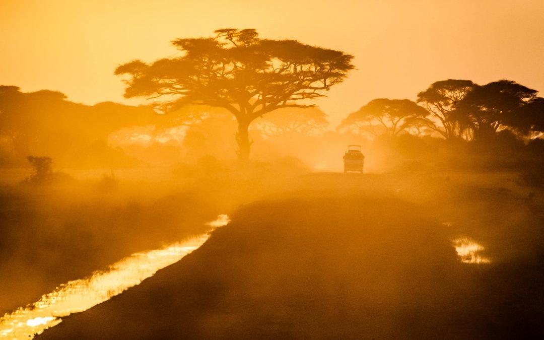 Internship in Mauritius, the African paradise