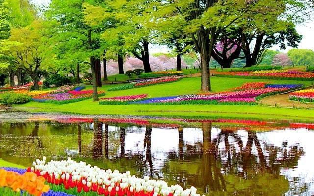 Top 10 des anecdotes sur les Pays-Bas