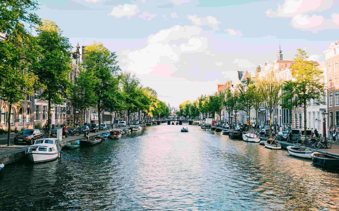 Témoignage d'Antoine : son stage aux Pays-Bas